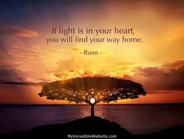 Sunset-Tree-Rumi